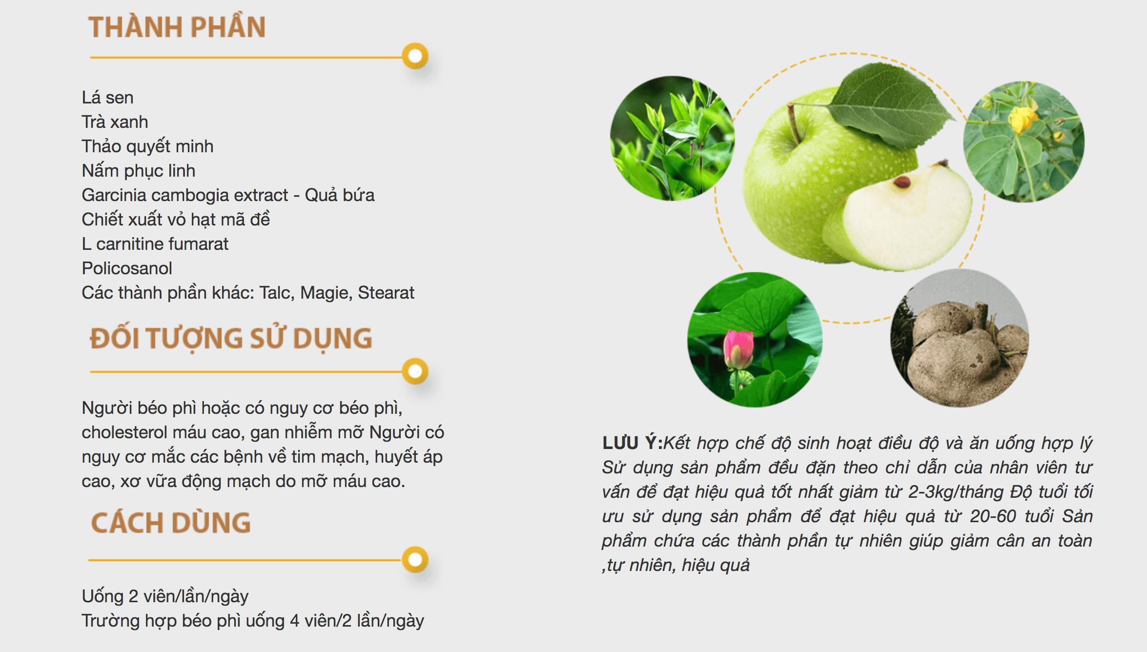 Thành phần cách dùng giảm cân Hoa Bảo